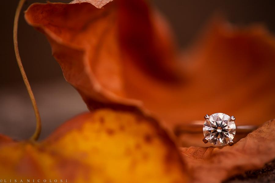 Lisa Nicolosi Photography -North Fork Weddings (15 of 15)