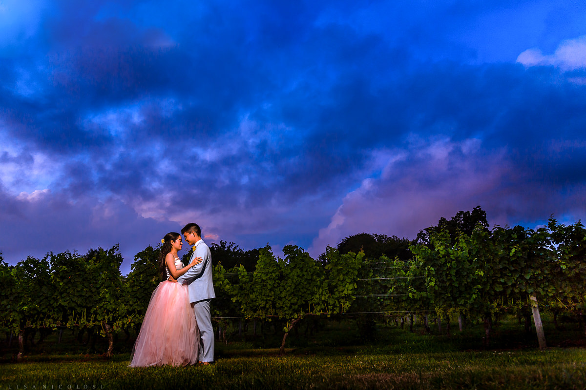 Wedding at The Old Field Vineyard - Long Island Wedding Photographer - Bride and Groom Portraits