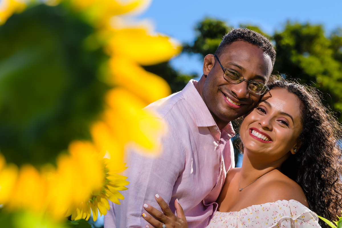 North Fork Wedding Photographer - Sunflower Engagement Portraits in Mattituck
