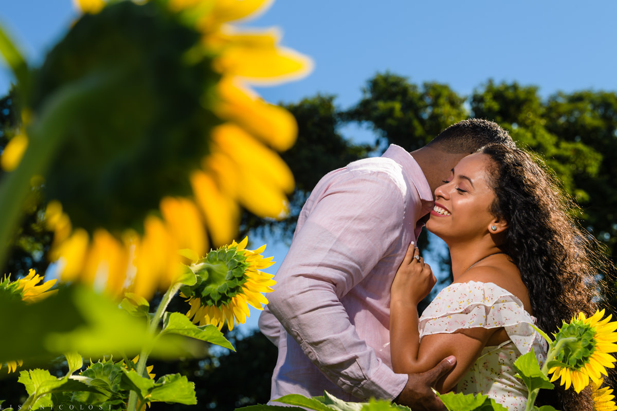 North Fork Sunflower Engagement Session in Mattituck - Long Island Wedding Photographer - Romantic portrait of couple in Sunflower Field