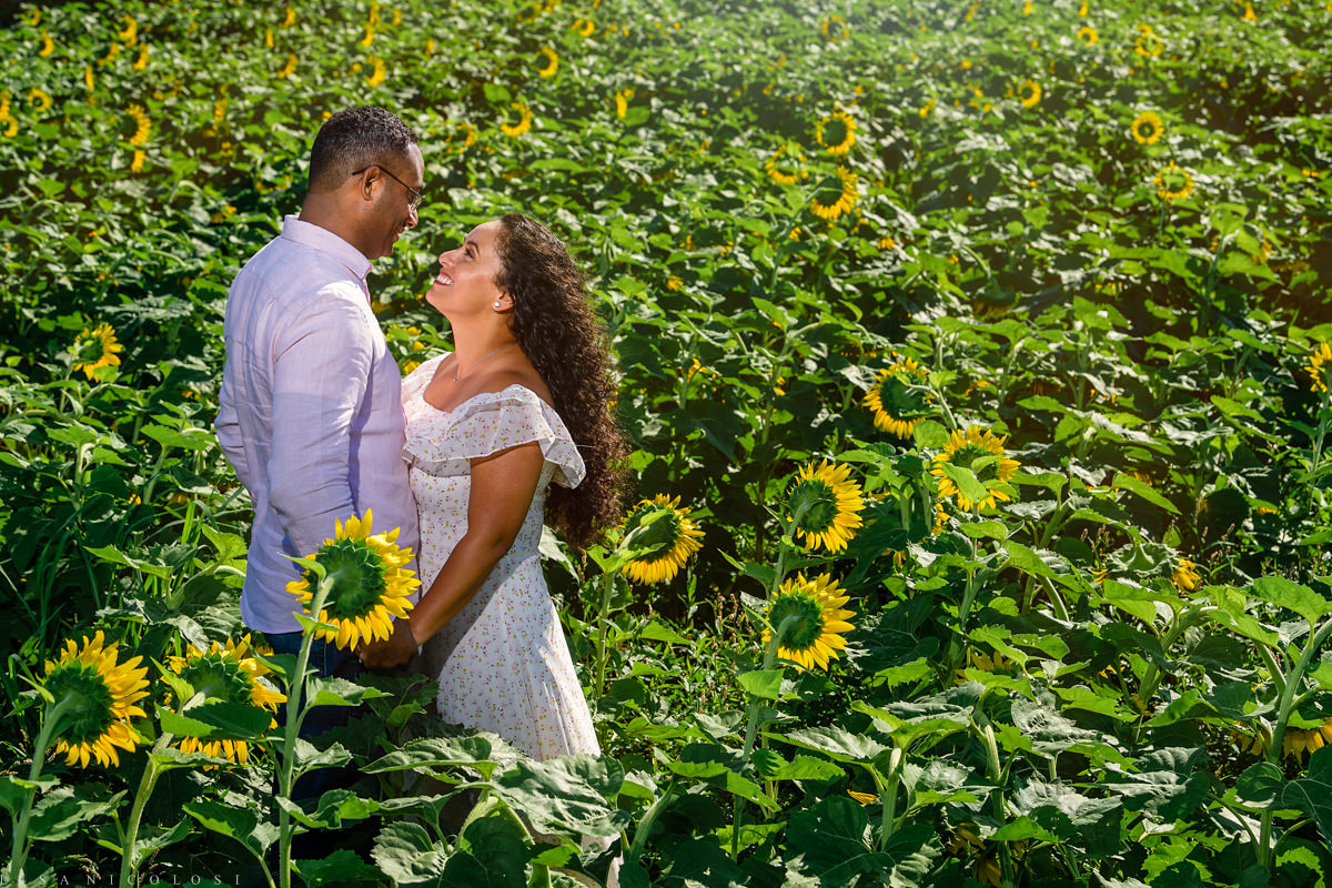 North Fork Sunflower Engagement Session in Mattituck - Romantic portrait of couple in Sunflower Field