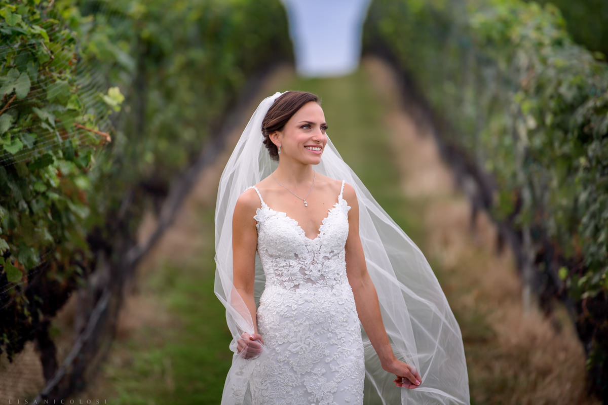 Romantic Bridal portrait - playing with Cathedral veil at Pellegrini Vineyards