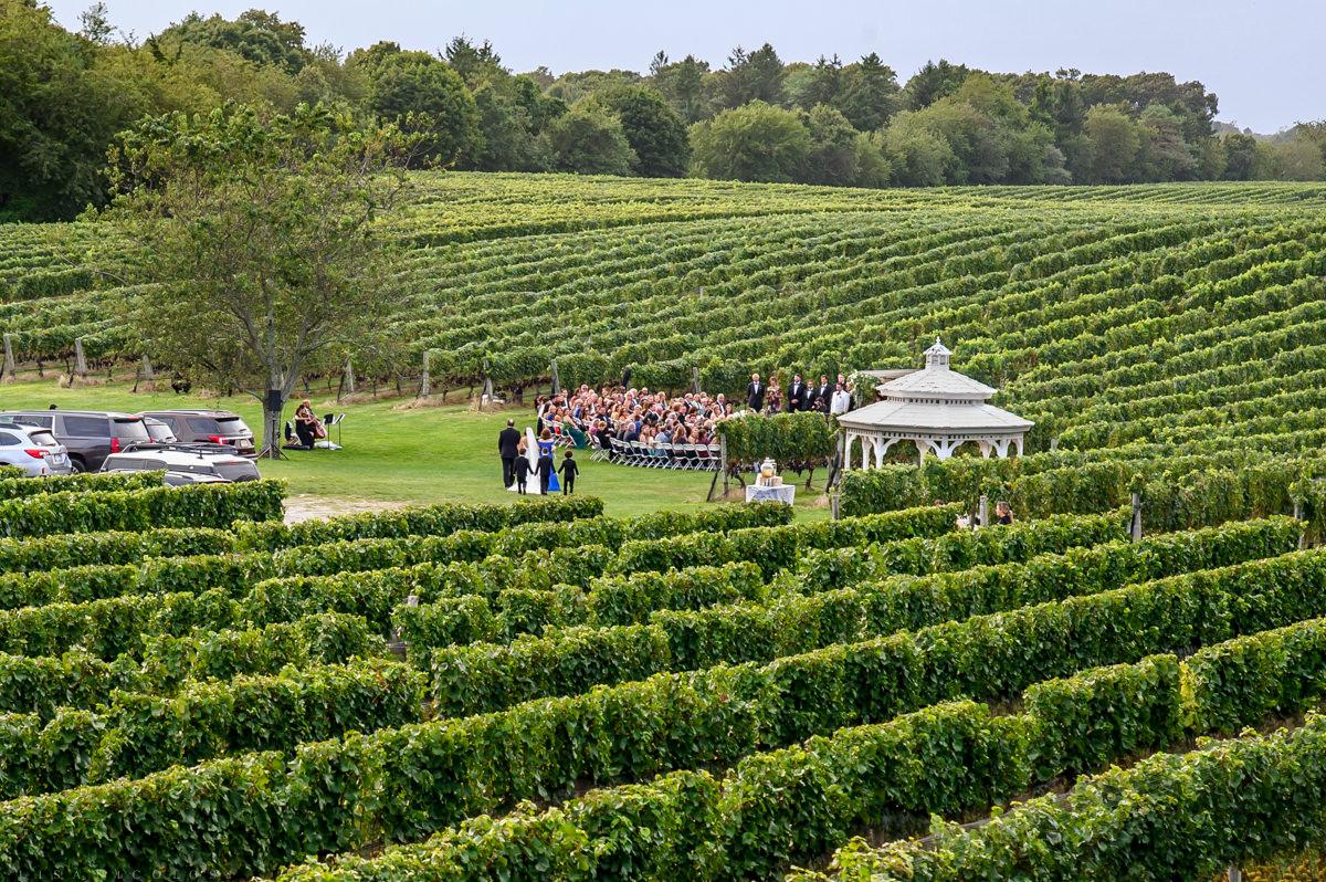 Wedding ceremony at Pellegrini Vineyards