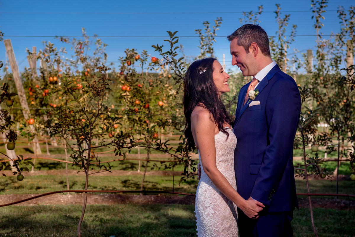 Jamesport Manor Inn Wedding - Bride and groom portraits in the apple orchard