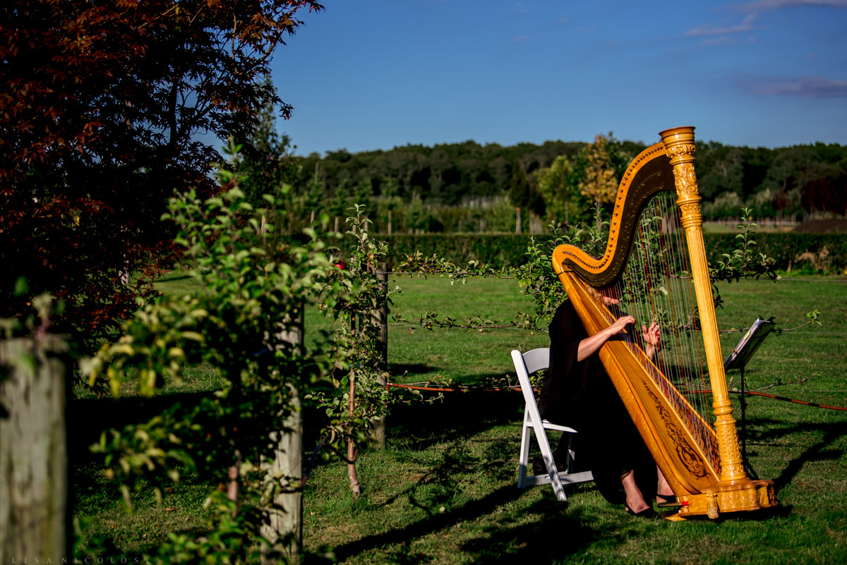 Jamesport Manor Inn Wedding Ceremony - Harpist