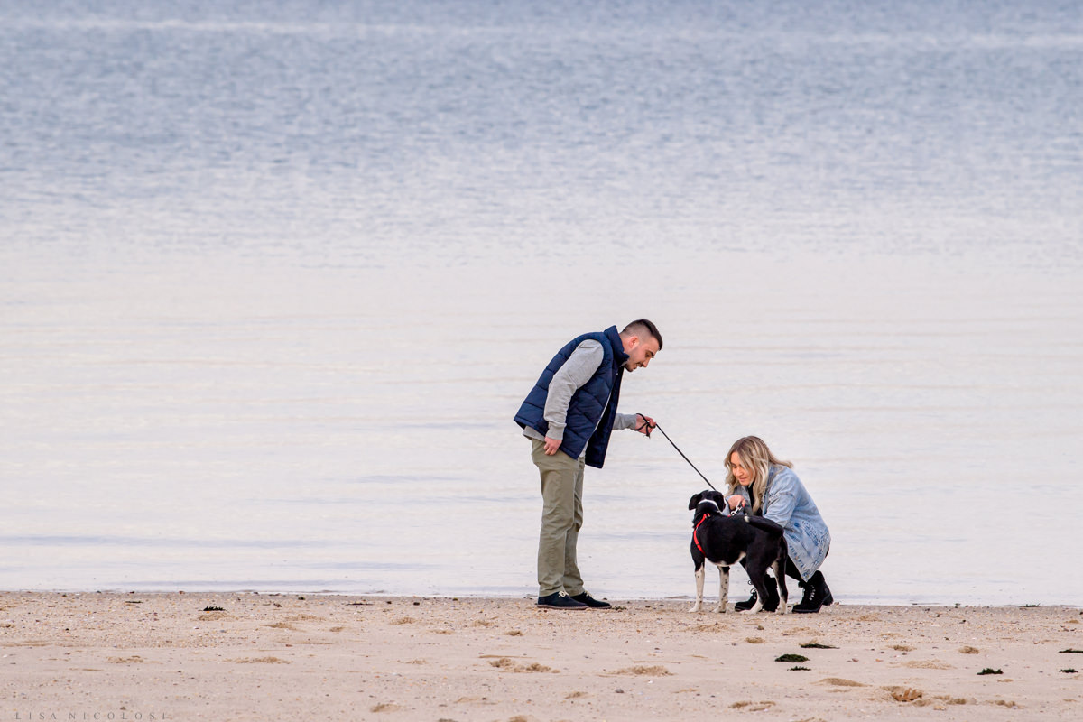 Hamptons Marriage Proposal on beach with dog