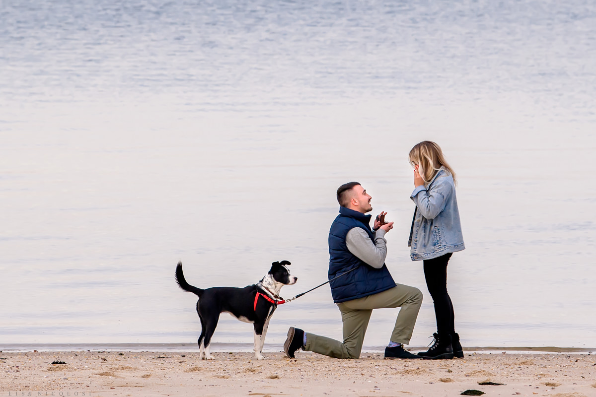 Groom to be kneeling on beach in Hampton Bays to propose marriage